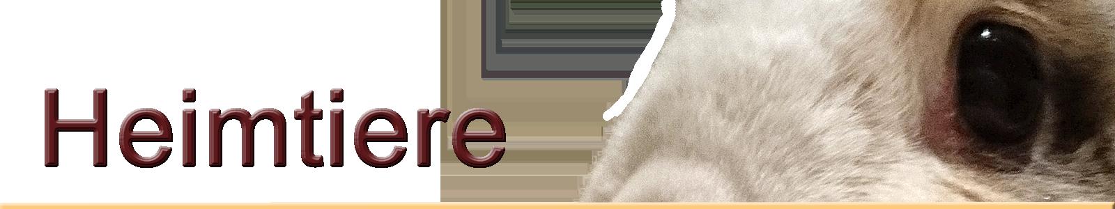 heimtiere