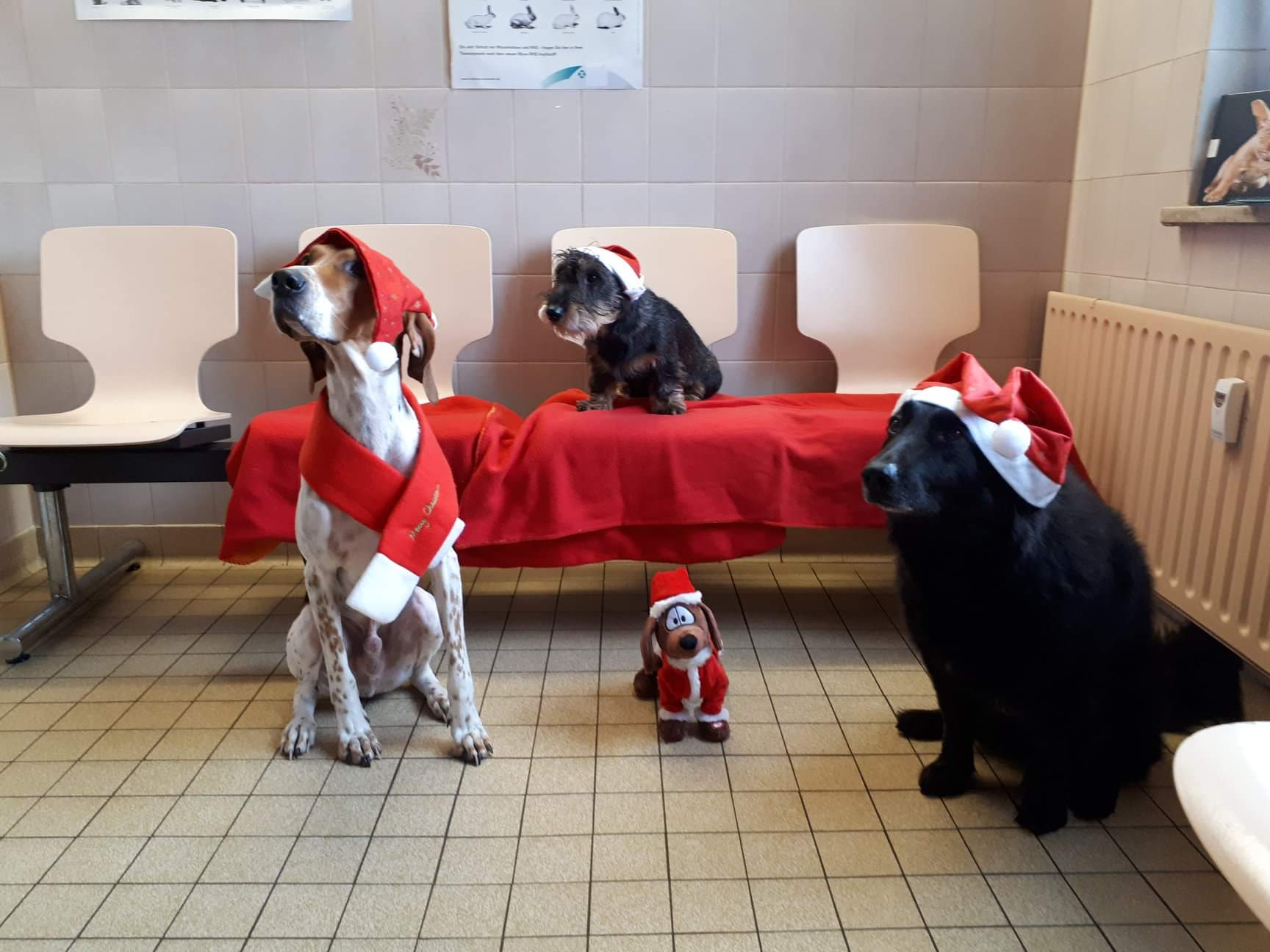 Tierarztpraxis Am Spichernplatz